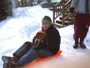 dog-sledding
